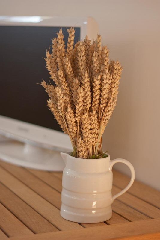 simply-clover-barley_ornament_jug