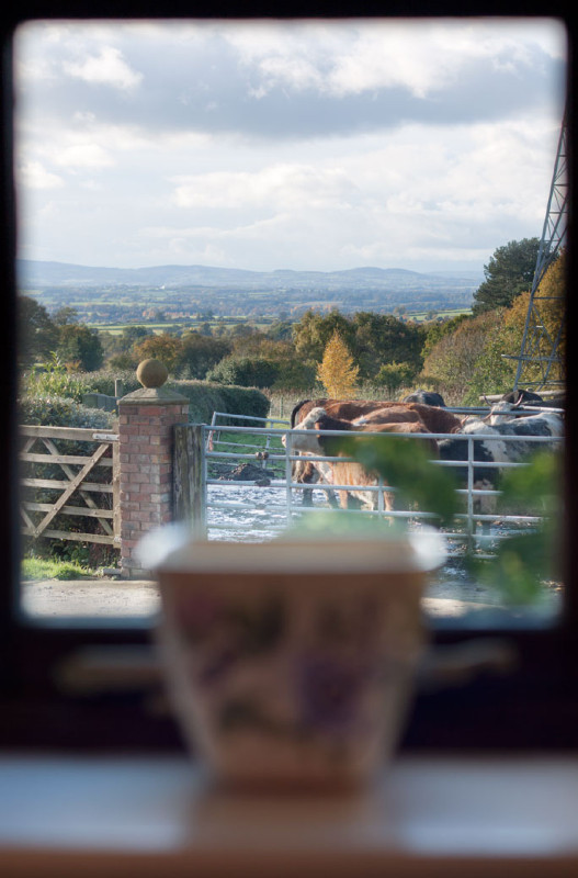 simply-the_dairy_cottage_shropshire_hills_views