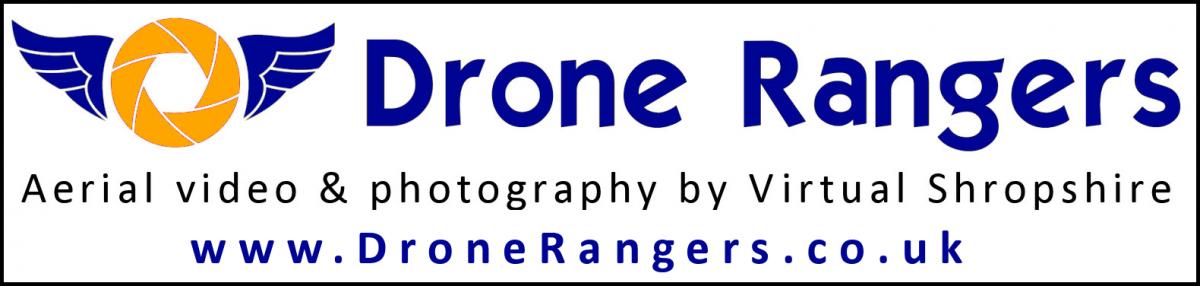 dr-logo-with-web-address-a