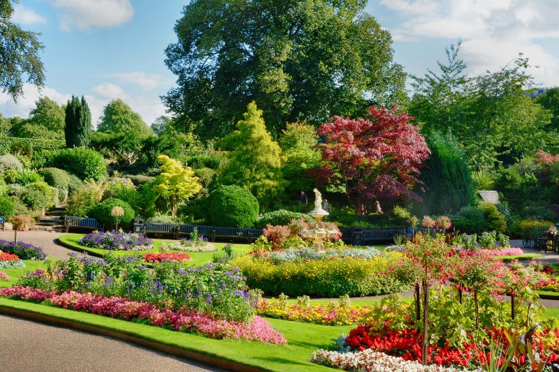 Image Result For Oswestry Garden Services